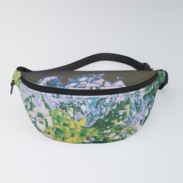 DHQ87 Fanny Pack