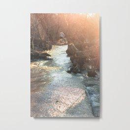 Belle Isle-Richmond Metal Print