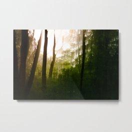 Vanity series [2] Metal Print