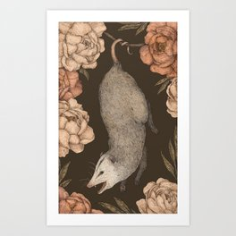 The Opossum and Peonies Art Print