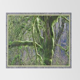 RAIN FOREST MAPLES IN SPRING Throw Blanket
