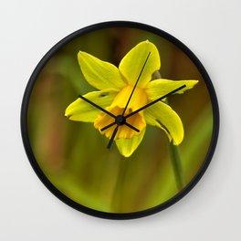 Daffodil No. 1 Wall Clock