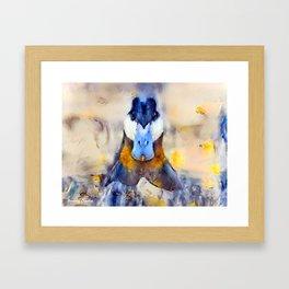 Mr. Ruddy Duck Framed Art Print