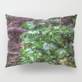 Gnarled vines & Ivy on a Misty Day Pillow Sham