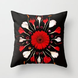 Red & White Throw Pillow