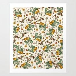 Apples Pears Peaches Art Print