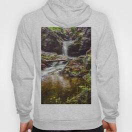 Ducklings swimming at the waterfall Hoody