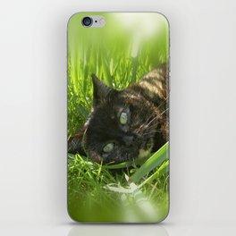 wild cat III iPhone Skin