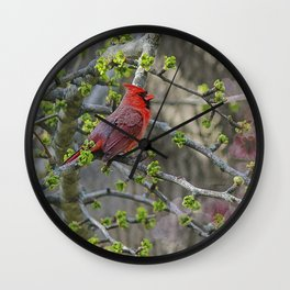 His Majesty the Cardinal Wall Clock