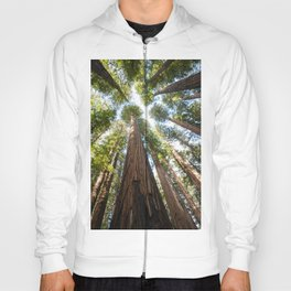 Humboldt Redwoods Photography, California State Park, Giant Redwoods, Forest Art, Tree Tops Hoody