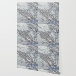 Winter grass Wallpaper
