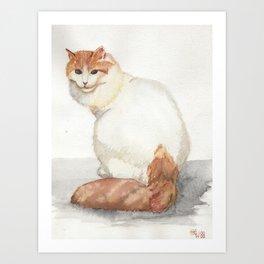 Cat - Turkish Van Art Print