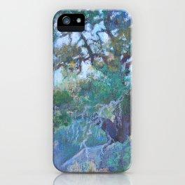Ephemeral Light iPhone Case