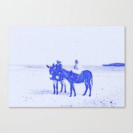 Blue Donkeys Canvas Print