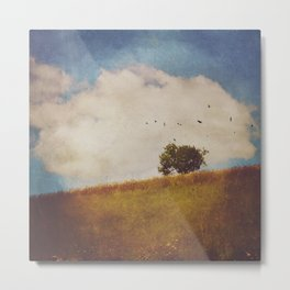 A Beautiful Afternoon Metal Print