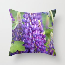 Longwood Gardens - Spring Series 118 Throw Pillow