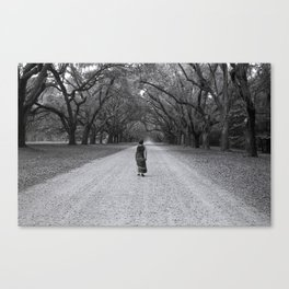Walking to Wormsloe (without words) Canvas Print