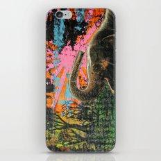 Marsh Bath iPhone & iPod Skin