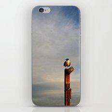 Lone Seagull iPhone & iPod Skin