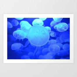 Jellyfishs Art Print