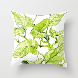 Devils Ivy Illustration Throw Pillow