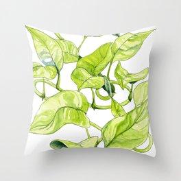 Devils Ivy Illustration Throw Pillow