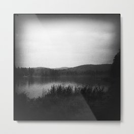 Lake Minerva #6 Metal Print