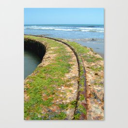 Old Tracks By The Ocean Canvas Print