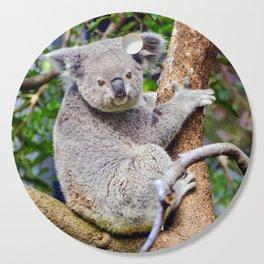 Australian Koala Bear Photo Cutting Board