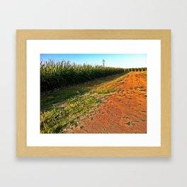 SugarCane Framed Art Print