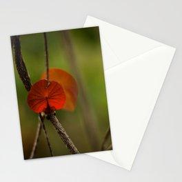 Round Leaf Stationery Cards
