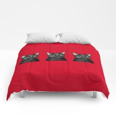 Three Black Cats on Red Comforters