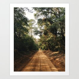 Carolina Sandhills Art Print