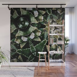 Succulents on Show No 1 Wall Mural