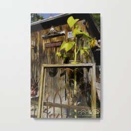 Antiques & Potting Shed Metal Print