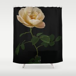 English Rose Collection Shower Curtain