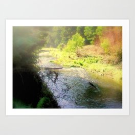 Otway Ranges Art Print