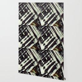 Feldspar and Biotite Wallpaper