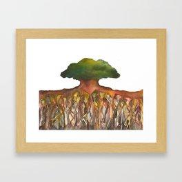 Deep Roots of Mama Tree Framed Art Print