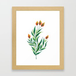Abstract Green Plant With Orange Buds Framed Art Print