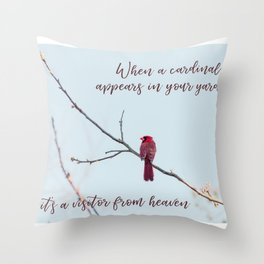 Visitor from Heaven Throw Pillow