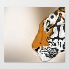 Tiger Profile Canvas Print
