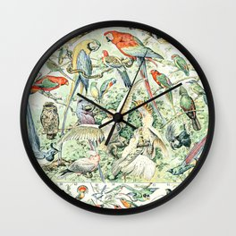 Wild Bird Diagram // Oiseaux V by Adolphe Millot 19th Century Science Textbook Artwork Wall Clock