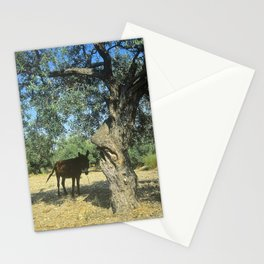 Aftenoon Shade Stationery Cards