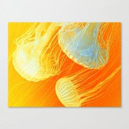 Jellyfish of the Orange Marmalade Hoodie Canvas Print