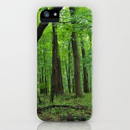 Rainy Forest Trails iPhone Case