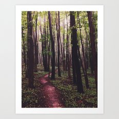 The Paths of Life Wander and Turn Art Print