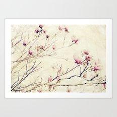 Spring Botanical - Tulip Tree, Magnolia × soulangeana II Art Print