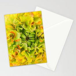 Pon Pon Trilly Ranunculus Stationery Cards