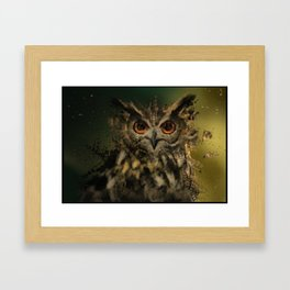 Bird Of the Night Framed Art Print